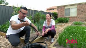 Self Irrigating Lawn - The Living Room