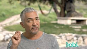 Cesar Millan periodontal disease 1