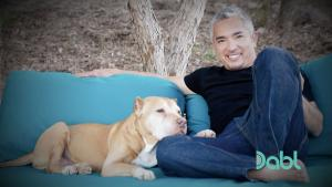 Cesar and his beloved dog