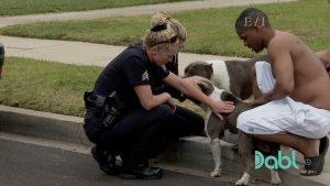 LAPD Dog Rescue