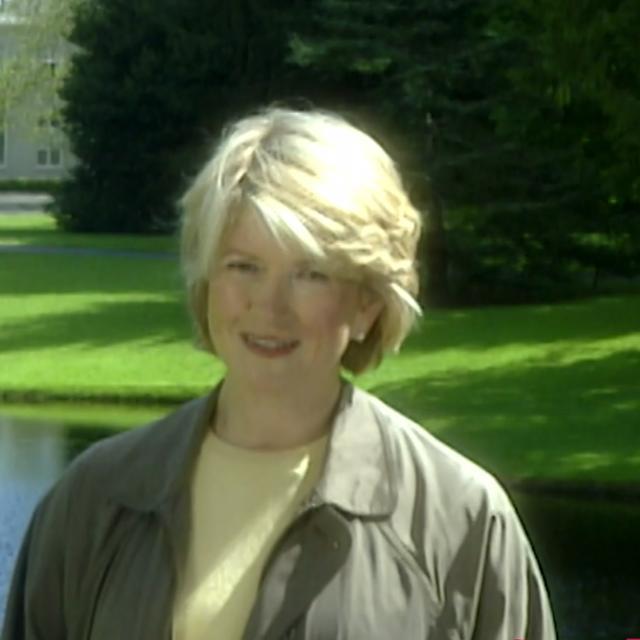 Moss Garden - Martha Stewart