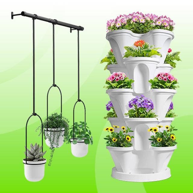 Indoor Herb Garden 2