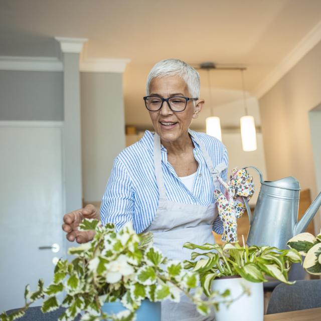 Elderly woman gardens inside home