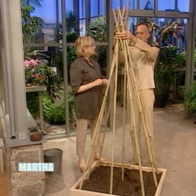 Martha and bamboo teepee