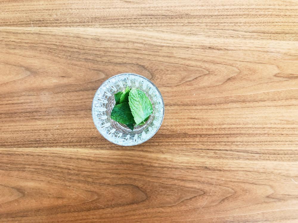 Mint Leaves - Mint Julep
